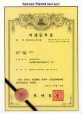 韓国意匠登録(1996)