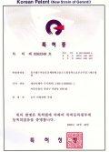 韓国発明特許2(2000)